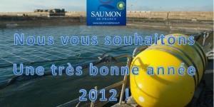 Le saumon de France voeux