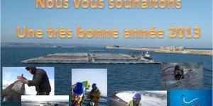 Voeux-2013 saumon de france
