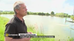 Ferme Aquacole d'Anjou - France 5