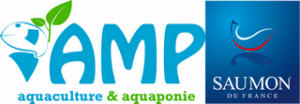 AMP Saumon de France logo