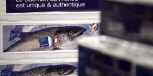 Ouest-France Entreprises