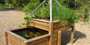 Les astuces pour réussir votre système aquaponique