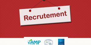 Offre d'emploi – Responsable Commercial(e)